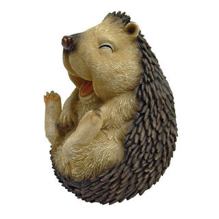 Roly-poly Laughing Hedgehog (Medium)