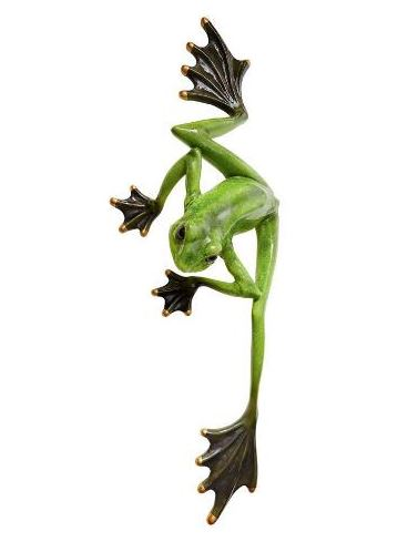 Wallace the Flying Frog